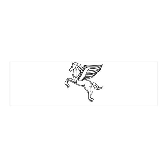 Chasing Pegasus 21x7 Wall Peel