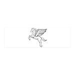 Chasing Pegasus 42x14 Wall Peel
