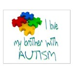 I love my brother with autism Small Poster