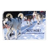 MKC Mush Postcards (Package of 8)