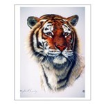 Animal Small Poster