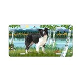 Birches /Border Collie Aluminum License Plate