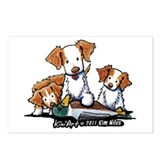 Duck Toller Postcards (Package of 8)