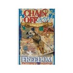 Chain Off 2011 Rectangle Magnet (100 pack)