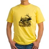Big game elk and deer T