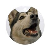 Siberian Husky Ornament (Round)