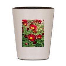 Red Daisy Mums Shot Glass