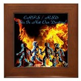 CPRS/RSD This Is Not Our Destiny Framed Tile