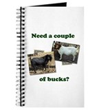 Need A Couple of Bucks Journal