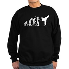 Evolution Karate Sweatshirt