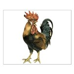 Rooster Chicken Small Poster