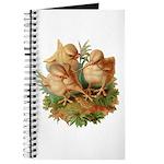 Chicken Chicks Journal