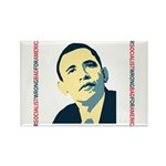 antiobama Rectangle Magnet (100 pack)