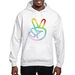 Rainbow Pieces Hooded Sweatshirt