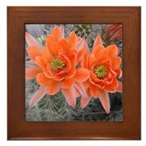 Sonoran Desert Cactus Flower Framed Tile