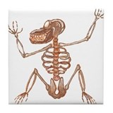 Baboon Skeleton Tile Coaster