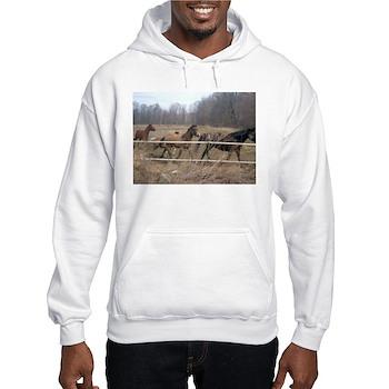 Hagan's Horses Hooded Sweatshirt