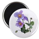 Lilac Poppy Magnet