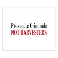 Prosecute Criminals Posters