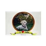 lab puppy Rectangle Magnet (100 pack)