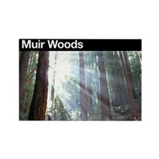 Muir Woods NM Rectangle Magnet