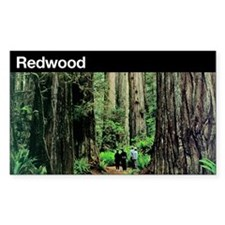 Redwood National Park Rectangle Decal