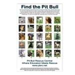 Find the Pit Bull Postcards (Package of 8)