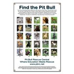 Find the Pit Bull Banner