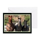 3 Roan Horses Greeting Card