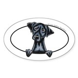 Black Lab Peeking Decal