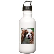 Cavalier King Charles Water Bottle