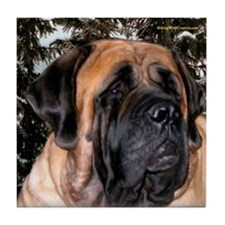 Mastiff 36 Tile Coaster