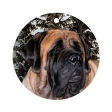Mastiff 36 Ornament (Round)