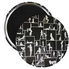 Cool Pole dancer Magnet