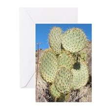 Prickly Pear Cactus Greeting Cards (Pk of 10)