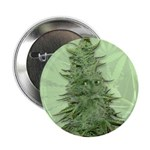 Green Bob 2.25&amp;quot; Button