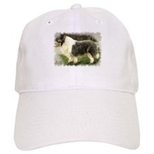 Blue Merle Collie Baseball Cap