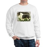 Blue Merle Collie Sweater