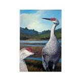 Sandhills Cranes Rectangle Magnet