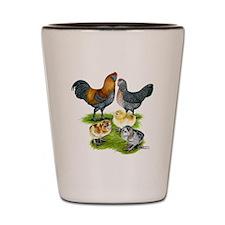 Ameraucana Chicken Family Shot Glass