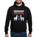 Friendship Hoodie (dark)