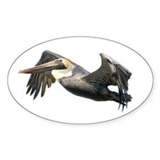 Pelican Flying Decal