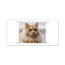 Maine Coon Cat 9Y825D-145 Aluminum License Plate