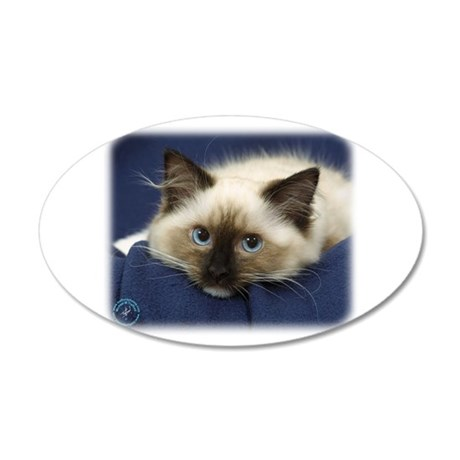Ragdoll Cat 9W082D-020 38.5 x 24.5 Oval Wall Peel