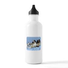 Siamese Cat 9W055D-074 Sports Water Bottle