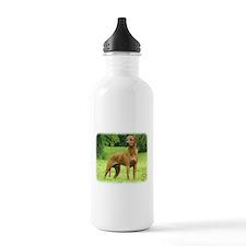 Rhodesian Ridgeback 9M046D-19 Sports Water Bottle