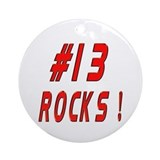 13 Rocks ! Ornament (Round)