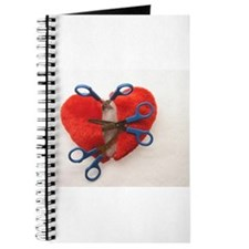 Open heart surgery Journal