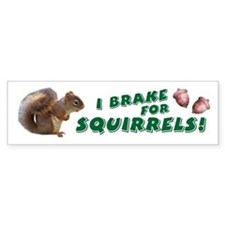 """I Brake for Squirrels"" Bumper Bumper Sticker"