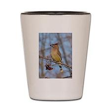 Cedar Waxwing Shot Glass